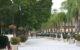 Pese a emergencia sanitaria, abre comercio del malecón de Chapala