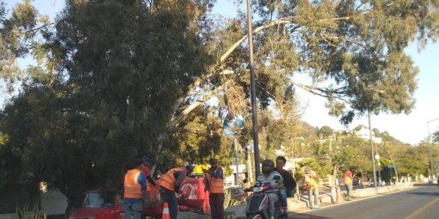 Detallan ciclovía y vialidad ante visita de Alfaro