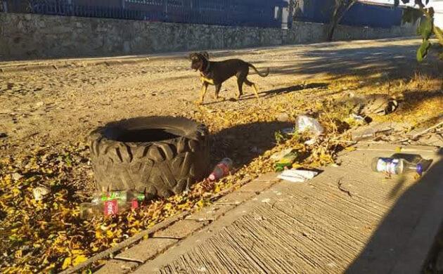 Lanzan reto para mantener los espacios públicos limpios