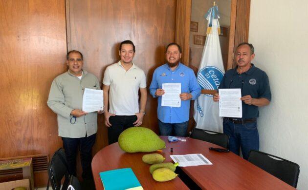 Celebra CETAC de Jocotepec acuerdo para investigar la producción industrial de la yaka